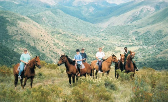 Addo horse riding. Addo National Elephant Park horse riding