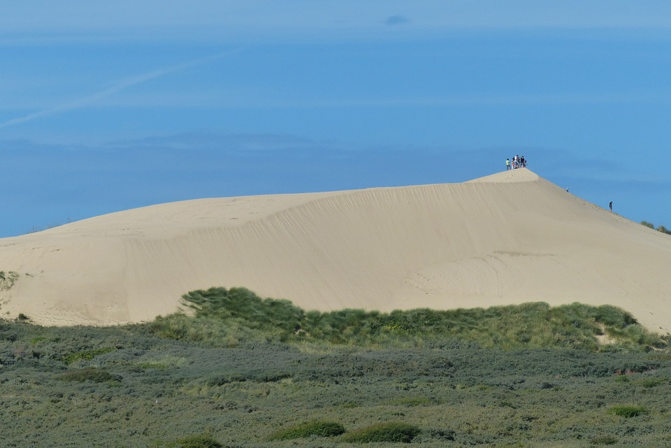 Addo beach safari and sandboarding